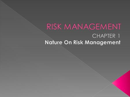  Meaning of Risk Management  Objectives of Risk Management  Steps in the Risk Management Process  Benefits of Risk Management  Personal Risk Management.