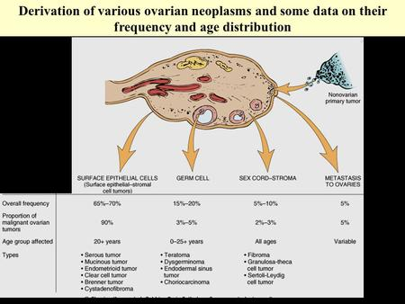 Derivation of various ovarian neoplasms and some data on their frequency and age distribution.