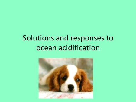 Solutions and responses to ocean acidification. Recap: Fossil fuels burned -> releases GHG's into the atmosphere -> GHG's are absorbed into the ocean->