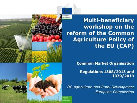 Multi-beneficiary workshop on the reform of the Common Agriculture Policy of the EU (CAP) Common Market Organisation Regulations 1308/2013 and 1370/2013.