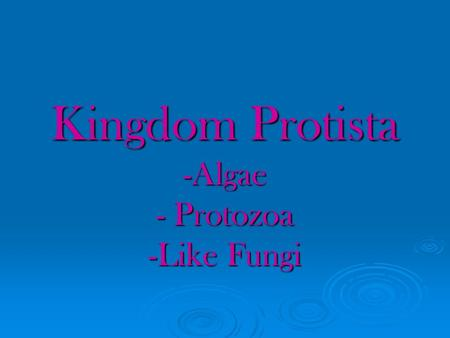 Kingdom Protista -Algae - Protozoa -Like Fungi. Evolution of Protista  Prokaryotes – 3.5 billion years ago  Eukaryotes – 1.5 billion years ago  Protozoan.