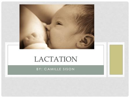 BY: CAMILLE SISON LACTATION. NEWBORNS HAVE 3 DEMANDS.