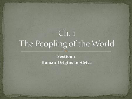 Section 1 Human Origins in Africa Artifact Culture Hominid Paleolithic Age Neolithic Age Technology Homo Sapiens.