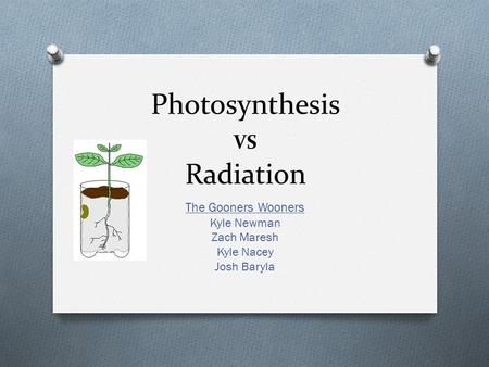 Photosynthesis VS Radiation The Gooners Wooners Kyle Newman Zach Maresh Kyle Nacey Josh Baryla.