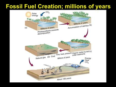 Fossil Fuel Creation; millions of years. Three main types of fossil fuels Coal (rock): Once ~80% of US energy, now ~22% Crude oil (gasoline, liquid);