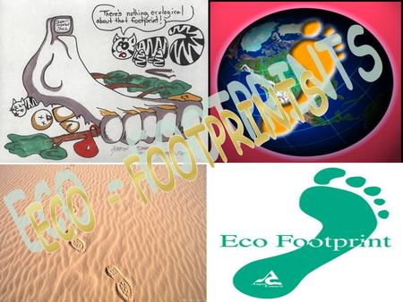 1.ECO-FOOTPRINTS INTRODUCTION ECO-FOOTPRINTS-BASICS METHODOLOGY ECO-FOOTPRINTS BY A COUNTRY 2.EFFECTS OF ECO FOOTPRINTS 3.REDUCE YOUR ECO-FOOTPRINTS.