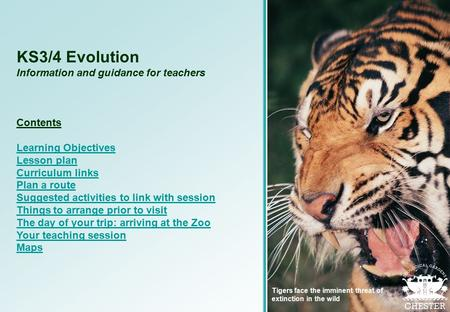 KS3/4 Evolution Information and guidance for teachers Contents Learning Objectives Lesson plan Curriculum links Plan a route Suggested activities to link.