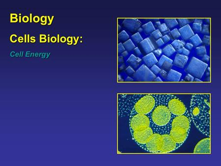 Biology Cells Biology: Cell Energy. Biology – Cell Energy Topics Investigate and analyze the cell as a living system including: Energy use and release.