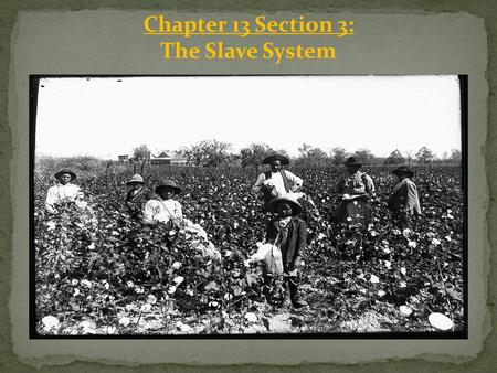 Chapter 13 Section 3: The Slave System. Slaves and Work Enslaved African Americans lived and worked on rural farms and plantations, and did a variety.