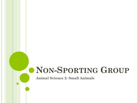 N ON -S PORTING G ROUP Animal Science 2- Small Animals.