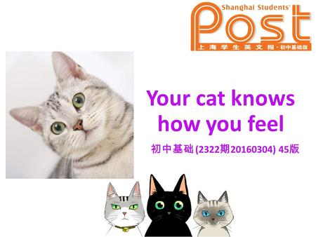 Your cat knows how you feel 初中基础 (2322 期 20160304) 45 版.