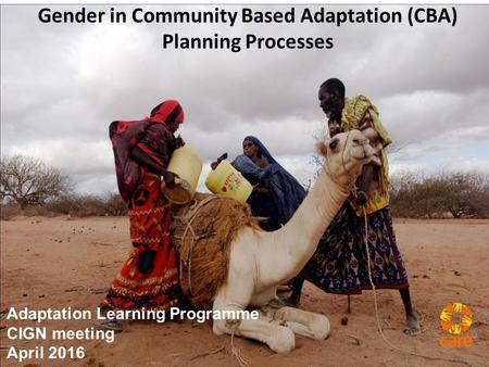 Gender in Community Based Adaptation (CBA) Planning Processes Adaptation Learning Programme CIGN meeting April 2016.