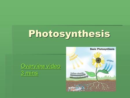 Photosynthesis Overview video 3 mins Overview video 3 mins.