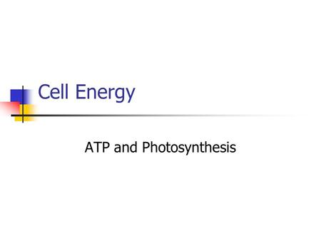 Cell Energy ATP and Photosynthesis. The Energy Molecule- ATP Energy in the body is used to maintain homeostasis Homeostasis- maintaining a constant internal.