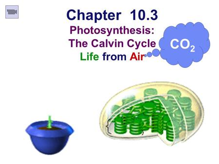 CO 2 Chapter 10.3 Photosynthesis: The Calvin Cycle Life from Air.
