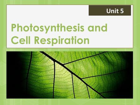 "Photosynthesis and Cell Respiration Unit 5. Energy in the Cell All cells require energy Adenosine triphosphate (ATP) is the ""energy currency"" in the cell."