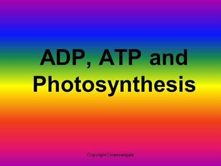 ADP, ATP and Photosynthesis Copyright Cmassengale.