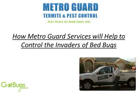 How Metro Guard Services will Help to Control the Invaders of Bed Bugs.