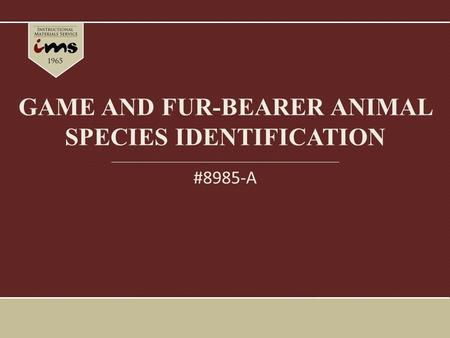 GAME AND FUR-BEARER ANIMAL SPECIES IDENTIFICATION #8985-A.