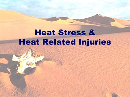 H/Safety/Training/Heat Stress Related injuries -6 04 1 Heat Stress & Heat Related Injuries.
