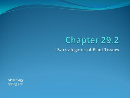 Two Categories of Plant Tissues AP Biology Spring 2011.