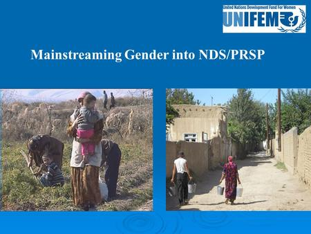 Mainstreaming Gender into NDS/PRSP. Gender profile  19,7% of households are headed by a women (in 1999 - 17,6%)  About 73% of women's labor is not paid.