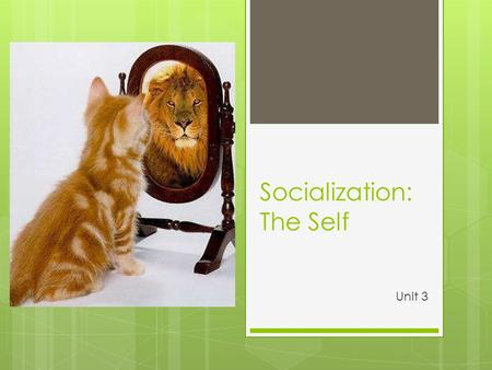 Socialization: The Self Unit 3. The Big Q : How does society shape who we become? In Your Notebooks: How are we shaped by society? Who do we base our.