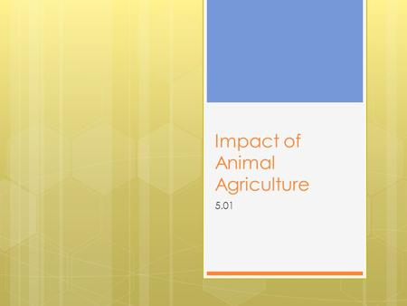 Impact of Animal Agriculture 5.01. Livestock Products & By- Products  Products- ruminants and other animals eat feed materials that humans will not eat.