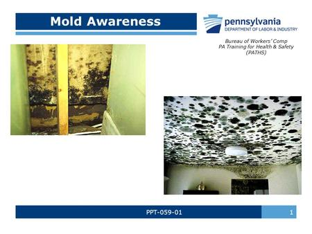 PPT-059-01 1 Mold Awareness Bureau of Workers' Comp PA Training for Health & Safety (PATHS)