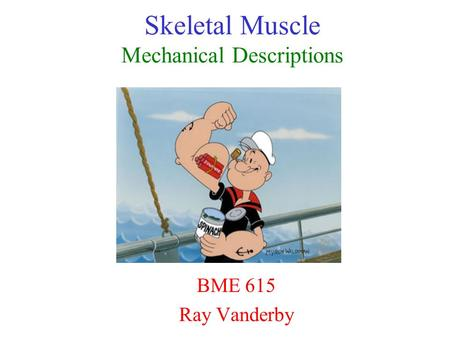 Skeletal Muscle Mechanical Descriptions BME 615 Ray Vanderby.