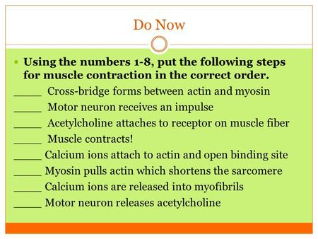 Do Now Using the numbers 1-8, put the following steps for muscle contraction in the correct order. ____ Cross-bridge forms between actin and myosin ____.