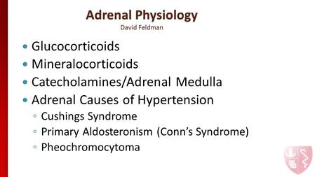 Adrenal Physiology David Feldman Glucocorticoids Mineralocorticoids Catecholamines/Adrenal Medulla Adrenal Causes of Hypertension ◦ Cushings Syndrome ◦
