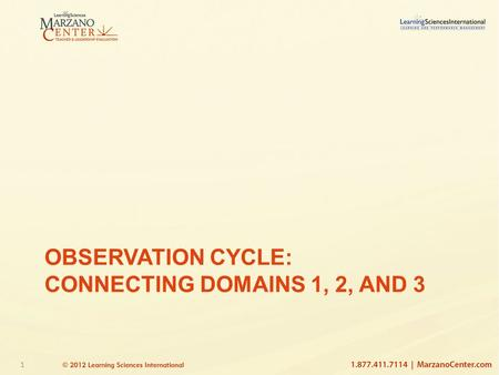 1 OBSERVATION CYCLE: CONNECTING DOMAINS 1, 2, AND 3.