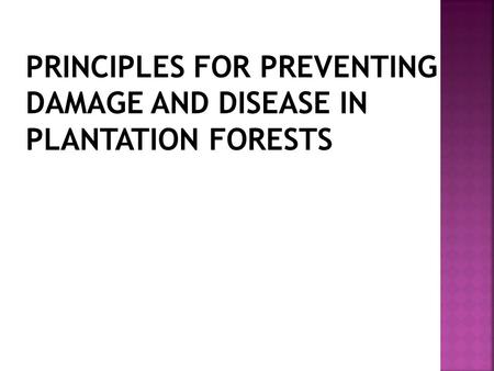 PRINCIPLES FOR PREVENTING DAMAGE AND DISEASE IN PLANTATION FORESTS.