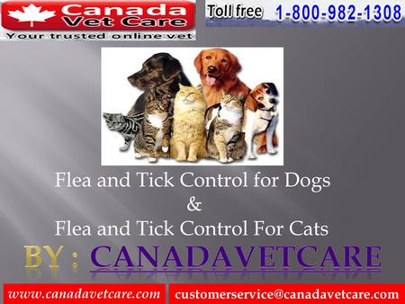 Flea and Tick Control for Dogs & Flea and Tick Control For Cats.