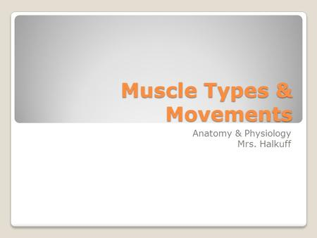 Muscle Types & Movements Anatomy & Physiology Mrs. Halkuff.