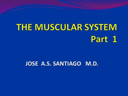 JOSE A.S. SANTIAGO M.D.. The Muscular System Muscles are responsible for all types of body movement Three basic muscle types are found in the body 1.