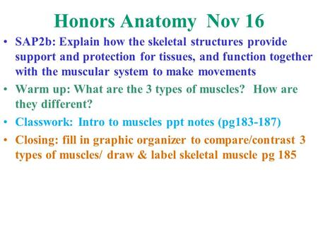 Honors Anatomy Nov 16 SAP2b: Explain how the skeletal structures provide support and protection for tissues, and function together with the muscular system.