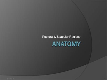Pectoral & Scapular Regions 128/01/2013. ... Before we start  شيت VS كتاب  علم VS علامة 228/01/2013.
