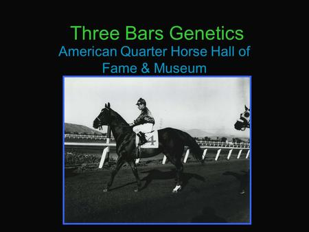 Three Bars Genetics American Quarter Horse Hall of Fame & Museum.