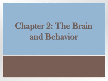 Chapter 2: The Brain and Behavior. Nervous System Central Nervous System (CNS) Divisions of the Nervous System Peripheral Nervous System (PNS) The Nervous.