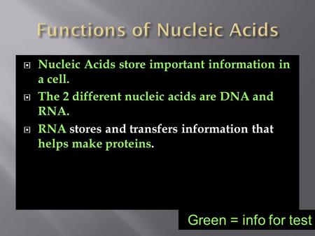 Nucleic Acids store important information in a cell.  The 2 different nucleic acids are DNA and RNA.  RNA stores and transfers information that helps.