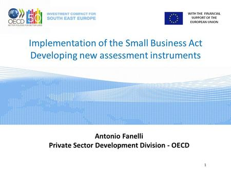 WITH THE FINANCIAL SUPPORT OF THE EUROPEAN UNION Implementation of the Small Business Act Developing new assessment instruments 1 Antonio Fanelli Private.
