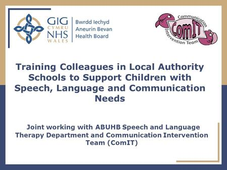 Joint working with ABUHB Speech and Language Therapy Department and Communication Intervention Team (ComIT) Training Colleagues in Local Authority Schools.
