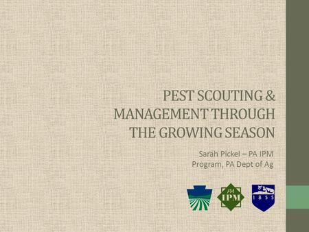 PEST SCOUTING & MANAGEMENT THROUGH THE GROWING SEASON Sarah Pickel – PA IPM Program, PA Dept of Ag.