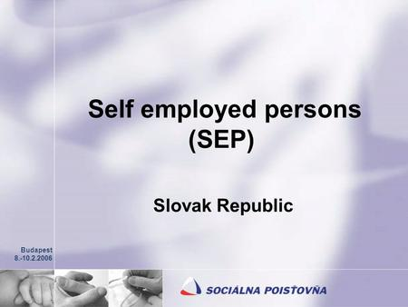 Self employed persons (SEP) Slovak Republic Budapest 8.-10.2.2006.