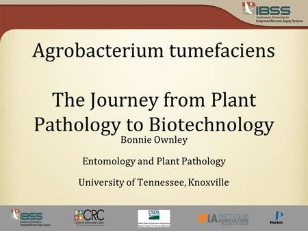 Agrobacterium tumefaciens The Journey from Plant Pathology to Biotechnology Bonnie Ownley Entomology and Plant Pathology University of Tennessee, Knoxville.