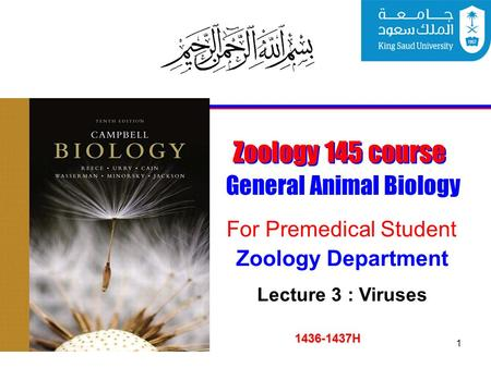 1 Zoology 145 course General Animal Biology For Premedical Student 1436-1437H Zoology Department Lecture 3 : Viruses.