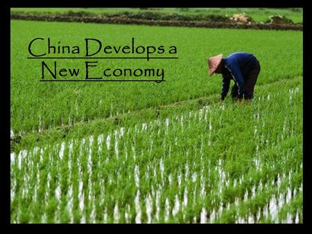 China Develops a New Economy