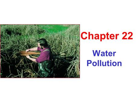 Water Pollution Chapter 22. Types of Water Pollution Sewage ↑ Enrichment Explosion in algal, bacteria, & decomposer populations ↑ Biological oxygen demand.